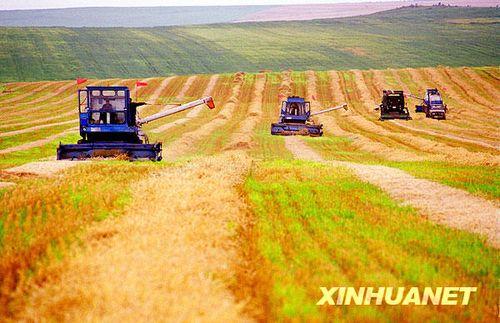 一位蒙古族摄影家记录的西部大开发_新闻滚动