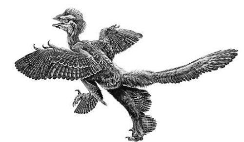 恐龙简笔画黑白