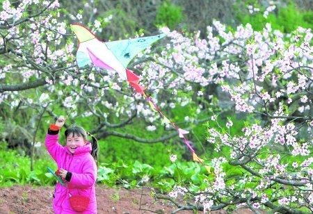 童简笔画风景春天