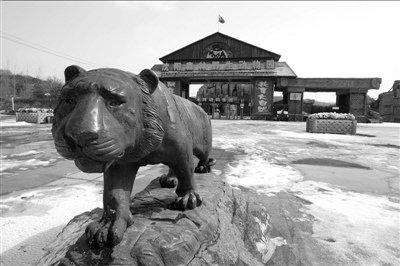 沈阳动物园3只虎仍有危险 老板被疑转走资金