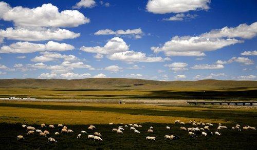 中国青藏高原研究论文量和被引用频次跃居世界第一