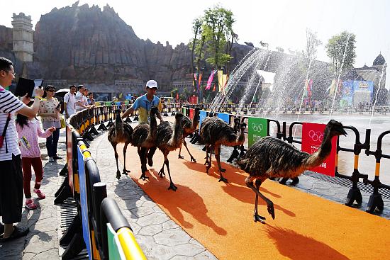 乐和乐都主题公园第四届动物奥运会4月2日开幕