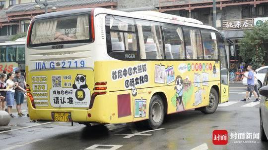 首届中国大熊猫国际文化周将举行 四川预热活动火热