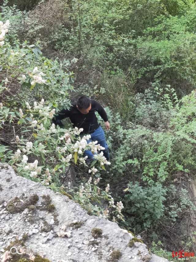 女孩坠入百米悬崖 冒险施救者:幸亏练了4年咏春拳