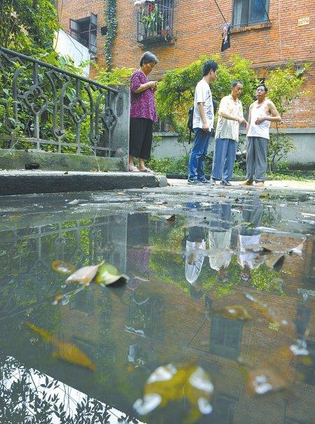 成都一小区下水道堵塞 百米过道积满污水(图)