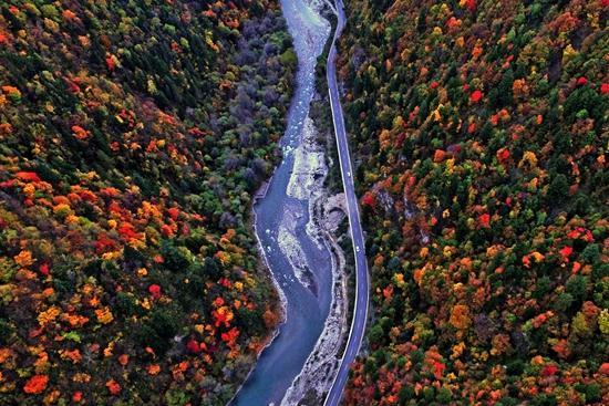秋游季启幕 10月到黑水去看五色彩林和藏居