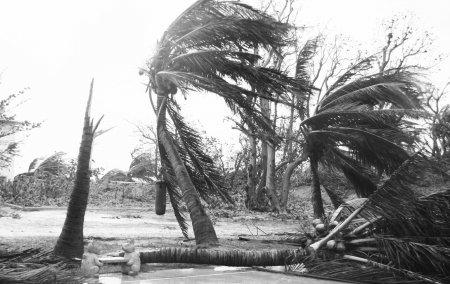 康森登陆三亚最大风力12级_新闻滚动