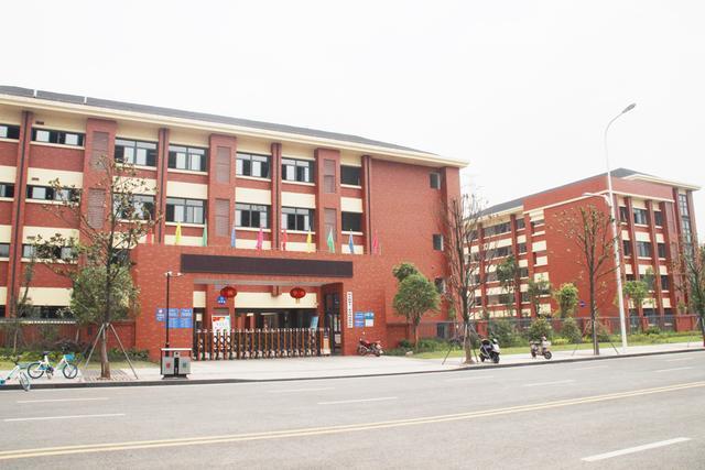 聚焦内江城市发展:5年成就一个中心 下一个中