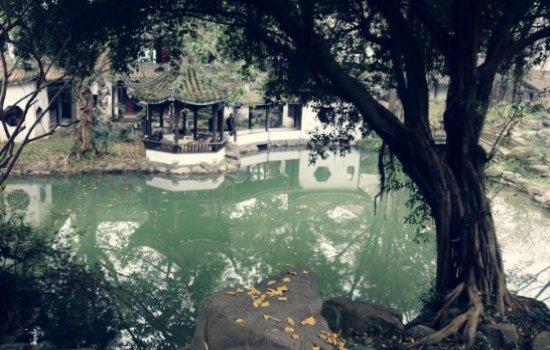 成都私藏苏州园林 遛狗拍照喝茶超棒