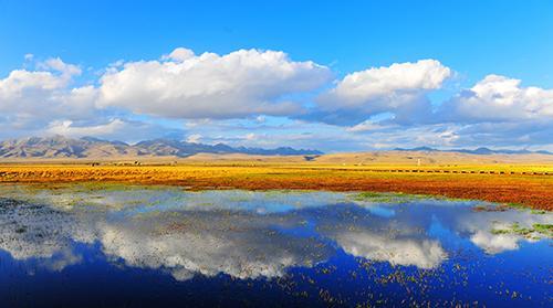 """""""众奥杯""""中国最美湿地若尔盖国际摄影大赛开赛"""