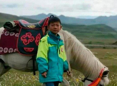8岁男孩四川景区失联 父母悬赏10万寻子