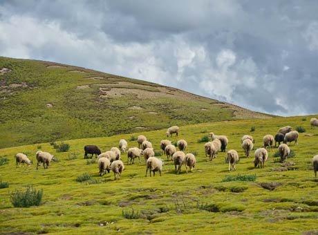8天耍西藏 遇见那些教科书式的美丽景点