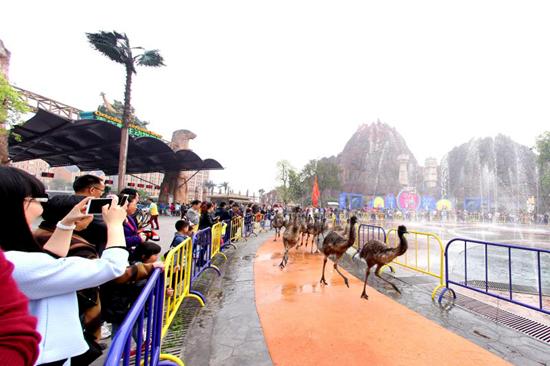乐和乐都第四届动物奥运会