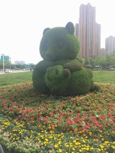 全国首条熊猫主题绿道预计6月在蓉建成