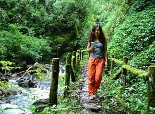 周末来这儿徒步 溪流清澈树林幽静