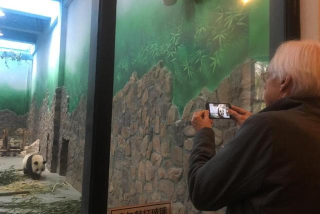 比尔·艾伟:熊猫元素融入音乐会在全球受欢迎