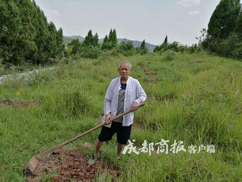 遂宁88岁老人修30公里路种几千棵树 一干就是20年