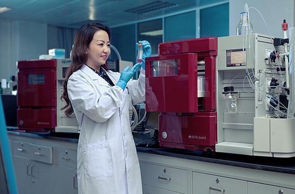 女科学家高效人生:准备考研用10天,准备考博用3天
