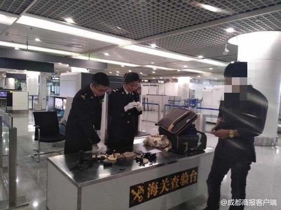 双流机场海关破今年最大走私象牙案 截获象牙制品18件
