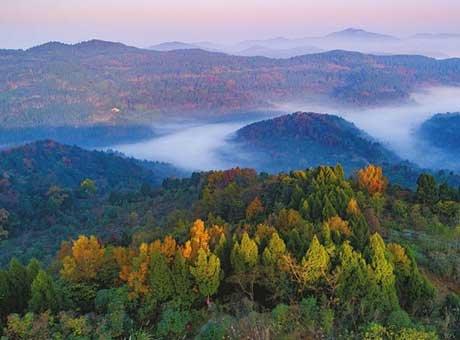 成都将建全球最大的城市森林公园