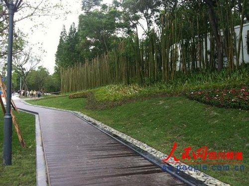 成都熊猫大道改造完工 变身 城北第一景观大道高清图片