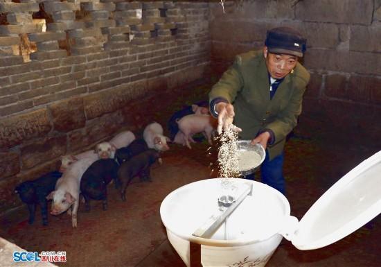 广安华蓥七旬老人替子还债 15年还完20万(图)