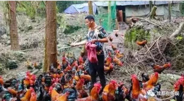 """什么情况?""""毛子""""赵亮汶川养鸡,不演戏了么?"""