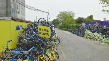 """新葡京赌场网址频现""""单车坟场"""" 专家:车企应对其负责"""