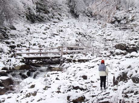 成都出发周末一日游 感觉自己去看了个假雪