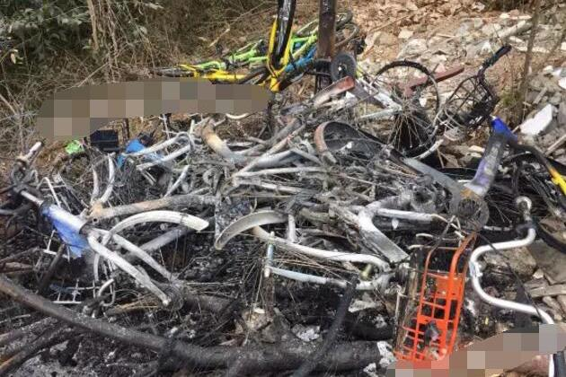 三圣乡共享单车被烧案告破 嫌犯系当地自行车租赁人员