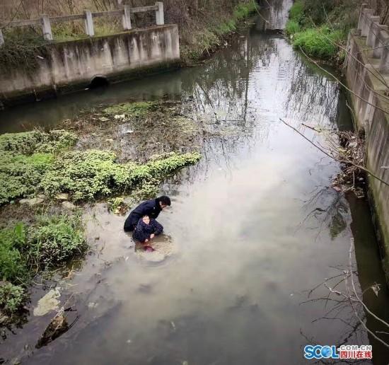 德阳一老太掉入河中身陷淤泥 路过民警跳河施救(图)