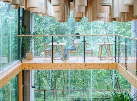 森林图书馆 免票小熊猫 成都周边新发现