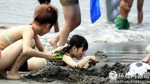组图:日本海滩的泳装美女