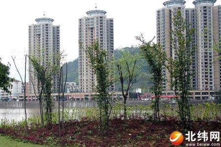 雅安:环境更美功能更全 特色生态城市更宜居