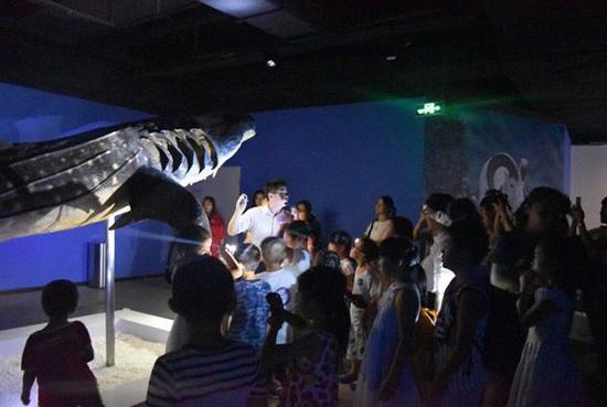 成都20名孩子夜游生命博物馆 认识鲸鲨海狮标本(图)