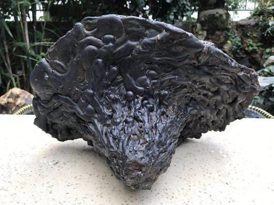 香格里拉陨石现身成都珠宝展 质疑者:这是炉渣