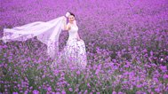新娘在薰衣草中动情跳舞
