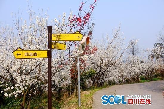四川发布今年第一期观花指数 重点推荐9个地点