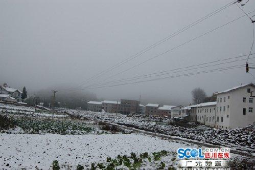 26日清晨广元气温陡降 现罕见秋季飘雪(图)