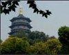 """杭州:出台""""限购令"""" 当地居民限新购一套房"""