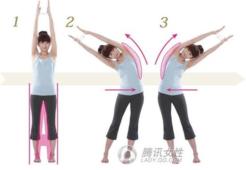 最潮的精灵驱动操教你练出迷人组图(曲线)减肥锁骨装机版瘦身图片