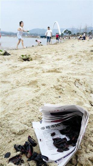 """厚爱就该厚待 沙滩公园难容""""沙子"""""""