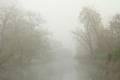 你在城市的雾霾里形色匆忙 我在山间的秋色中流连忘返