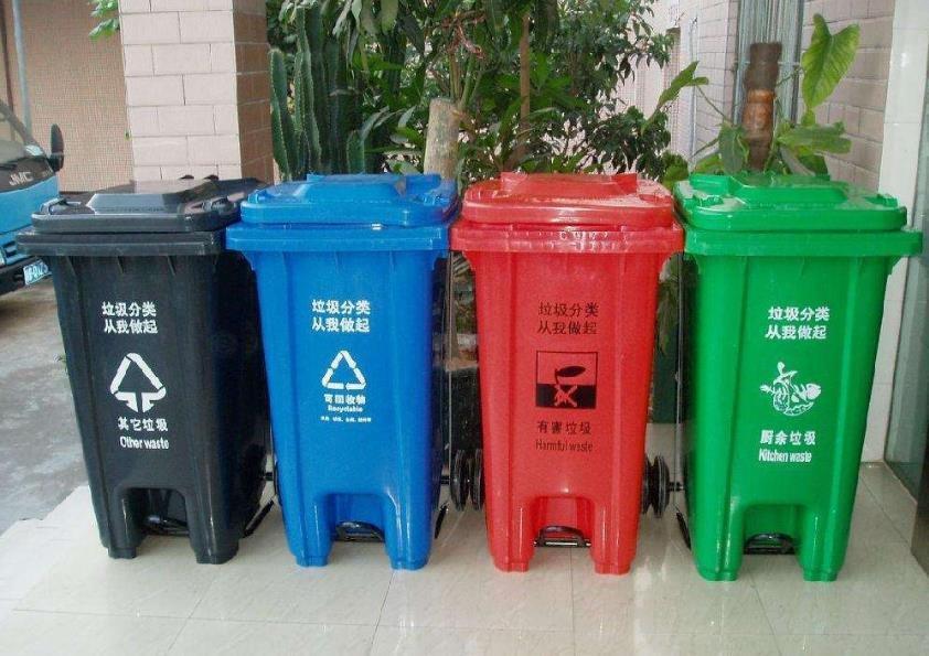 上海:垃圾分类进校园 知行结合很重要
