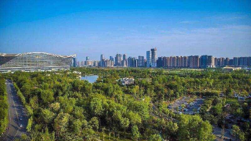 四川:年内启动四大森林城市群建设