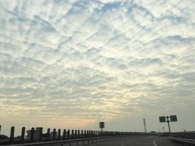 下周全国回暖 除夕前江南部分地区最高温或超20℃