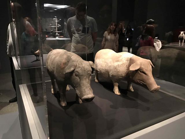 展览内丰富的动物形象(汉代,陶器).图片来源:徐安琪