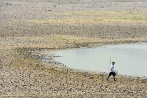 青岛水库干涸河道断流 近20万人临时性饮水困难