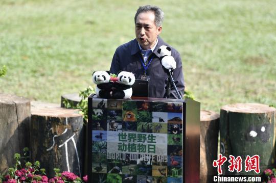 """广州启动""""世界野生动植物日""""倡议保护虎豹"""
