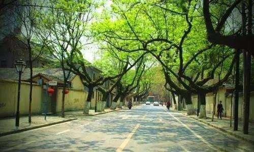 南京海绵城市最新规划出炉 2030年城市建成区八成以上面积达标